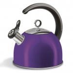 Accents 2.5l whistling kettle plum